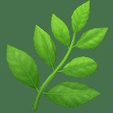 Herb Emoji, Apple style