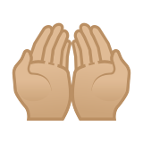 Palms Up Together Emoji with Medium-Light Skin Tone, Google style